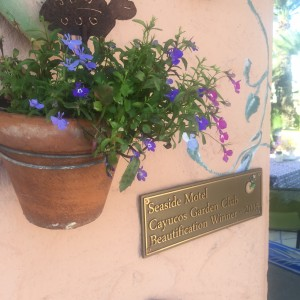 2015 Beautification award from the Cayucos Garden Club